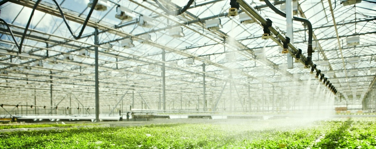 Simulating the Effect of Climate Change on Agriculture