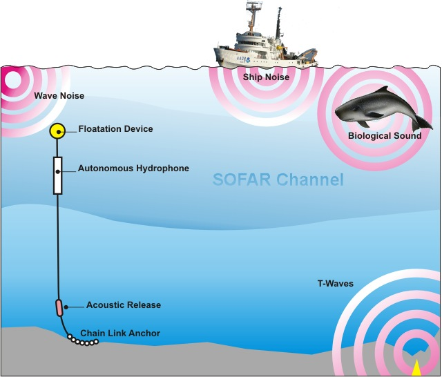 Open-water monitoring using a hydrophone.