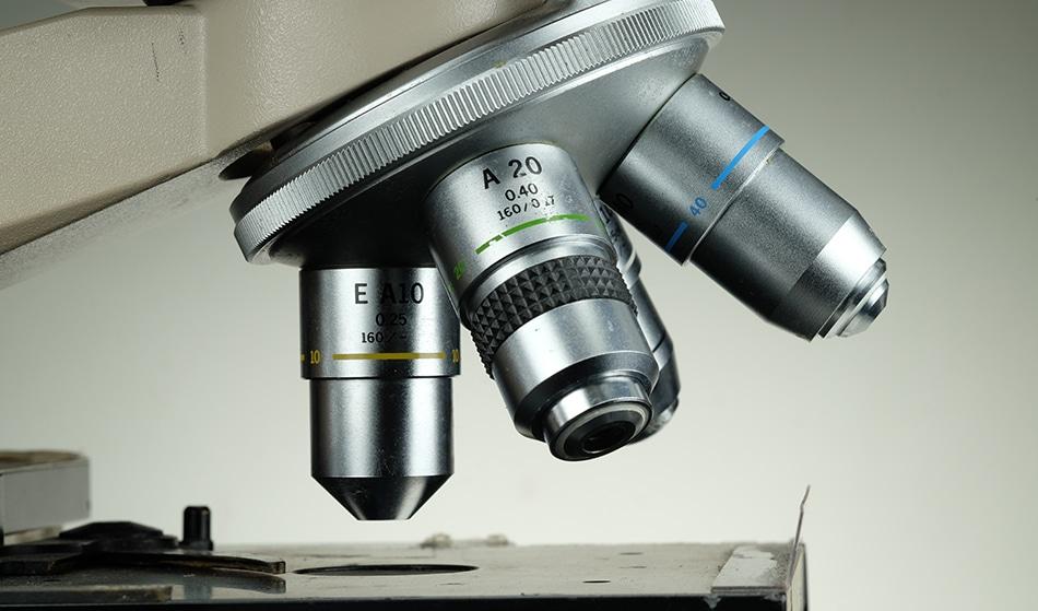 Optical Microscopy - s.sermram / Shutterstock