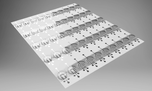 Graphene Sensors on Plastic