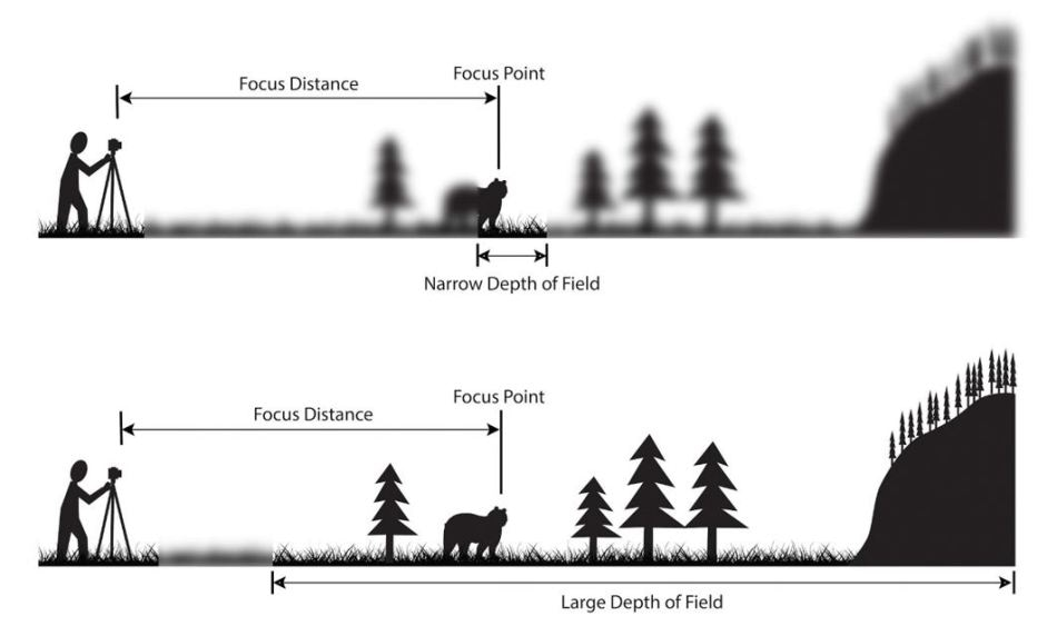 An illustration of the impact of DOF when capturing images at a given focus distance. (Source: PhotographyLife)