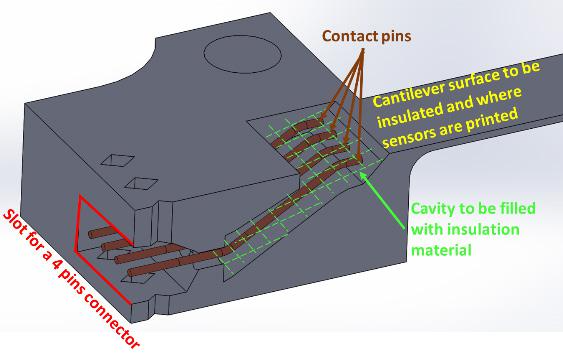 Cross section of the testing cantilever structure CAD design