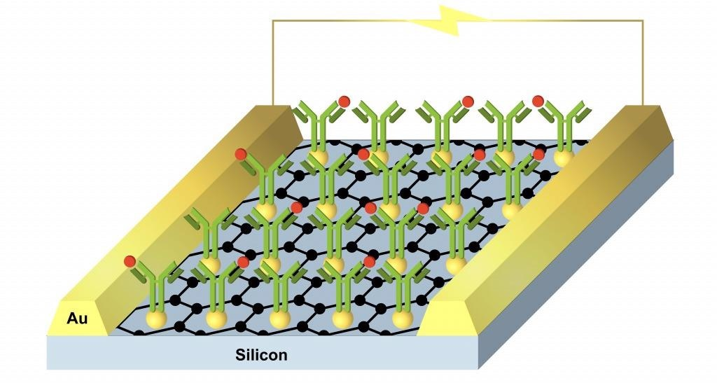 Chemical and Biosensor Chips