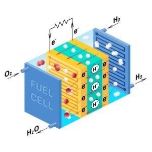 Fuel cell diagram. Vector. Device that converts chemical potential energy into electrical energy. A PEM, Proton Exchange Membrane cell uses hydrogen gas and oxygen gas as fuel.