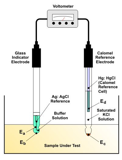 Working principle to a pH Meter.