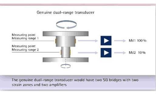 Schematic of dual-range torque sensor