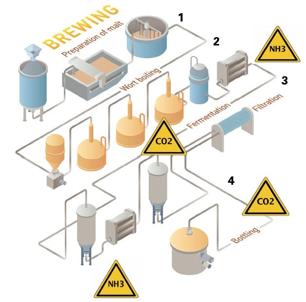 The different processes involved during brewing and the gases evolved during each of them