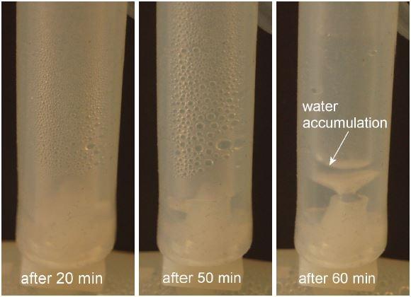 Determining Superior Immunity to Humidity Using LDE Differential Pressure Sensors