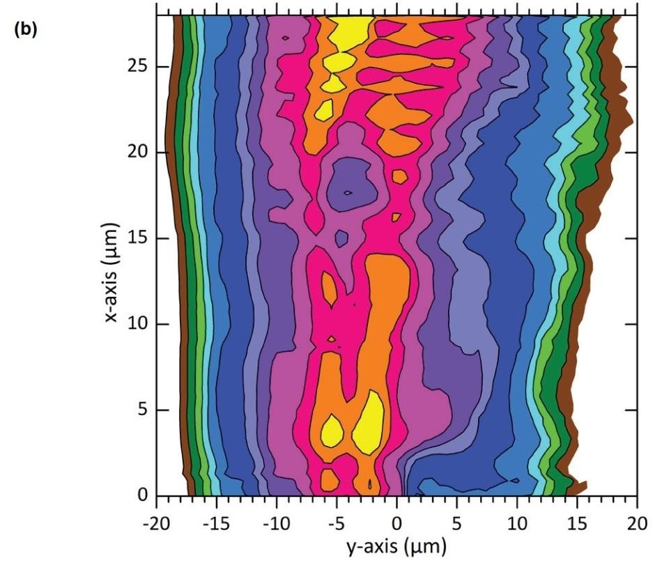 3D color plot showing the surface morphology of a 200 µm diameter cylinder.