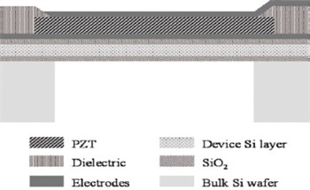 Vibrational Analysis of Piezoelectric Micromachined Ultrasonic Transducers