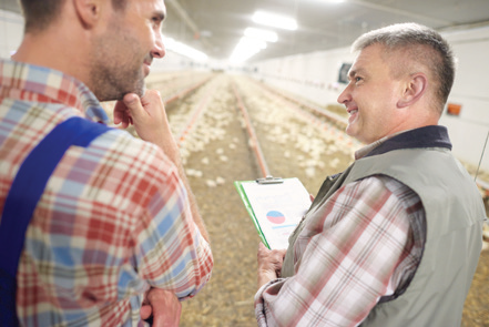 Simplifying Feed Inventory with FeedView®