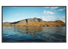 NEC 52-Inch LCD Display with Ambient Light Sensor