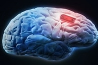 New Sensor Could Detect Real-Time Changes in Brain Serotonin Levels During Sleep, Fear
