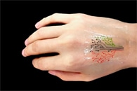 Soft, Strain-Sensing Device for Non-Invasive and Real-Time Detection of Skin Disorders