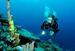 Robotic Sensors to Monitor Marine Ecosystems