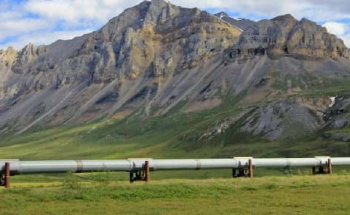 Bio-Inspired Scanning Method Detects Corrosion in Oil and Gas Pipelines