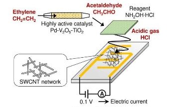 New, Tiny Sensor Continuously Tracks Ethylene Gas Emitted from Plants
