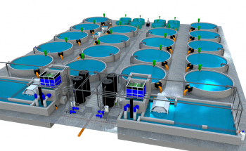 Reliable Ozone and Oxygen Gas Monitoring in Aquaculture Systems