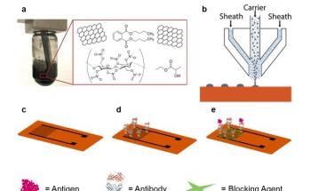 Improving Graphene Biosensors for use in Medicine and Food Monitoring