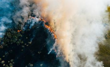 The Role of Drones and Sensors when Monitoring Wildfires