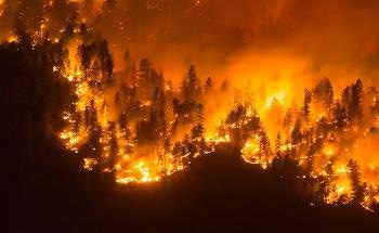 Wireless Sensors and UAVs Could be Ideal for Battling Forest Fires