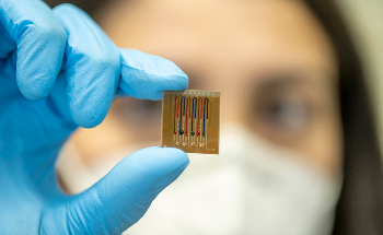 Researchers Develop Biosensors to Measure Antibiotics in Mammals