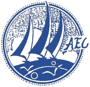 AEC Electronics Company Limited